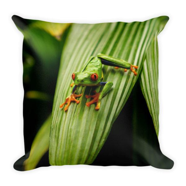 sierkussen dieren kikker groen tropical jungle