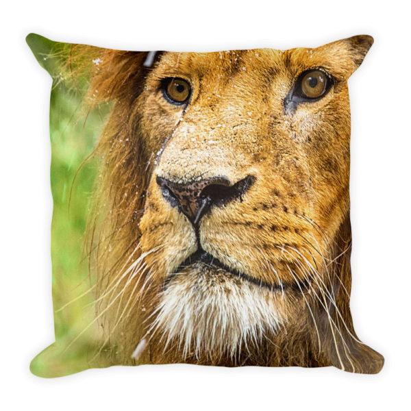 sierkussen dieren leeuw