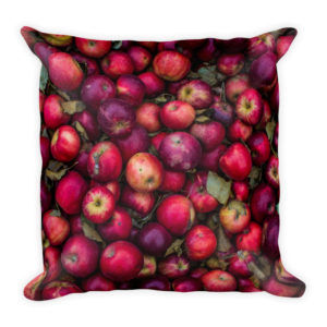 sierkussen appels